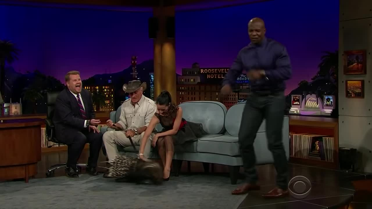 Colbert, Comedy, James Corden, Stephen Colbert, The Late Late Show, comedian, impressions, late night, late night show, monologue, I will not sit down GIFs