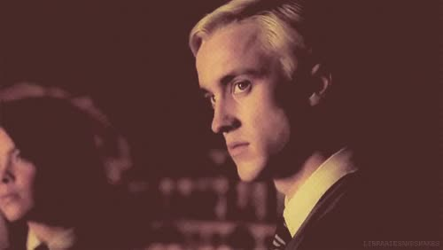 Watch and share Harry Potter Draco And Hermione GIFs on Gfycat