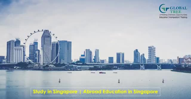 Watch and share Study In Singapore GIFs by Joy on Gfycat