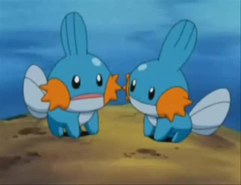 Reallife Mudkip Gifs Search Search Share On Homdor