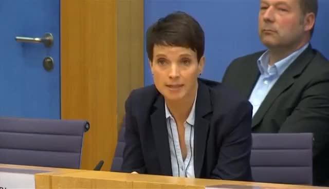 Watch AfD-Chefin Petry sorgt für Eklat: Verzicht auf Fraktionsmitgliedschaft GIF on Gfycat. Discover more related GIFs on Gfycat