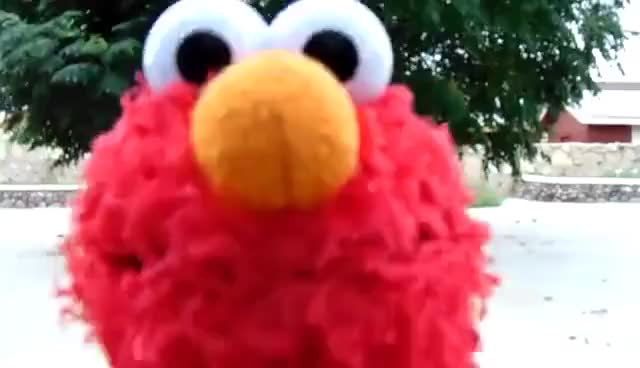 Watch and share Ice Water Challenge GIFs and Sesame Street GIFs on Gfycat