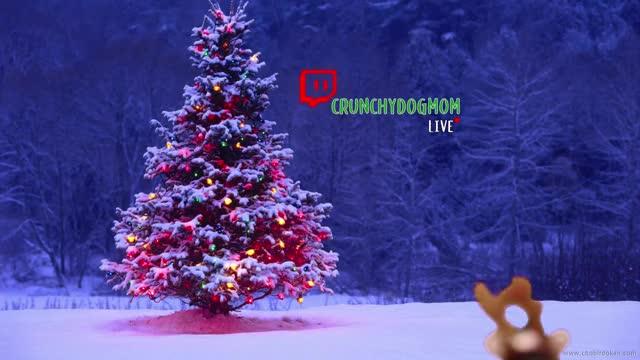 Watch and share MVI 2938 GIFs by Hooz on Gfycat