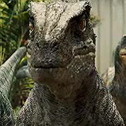 Watch and share Jurassic World Gif GIFs and Chris Pratt Gif GIFs on Gfycat