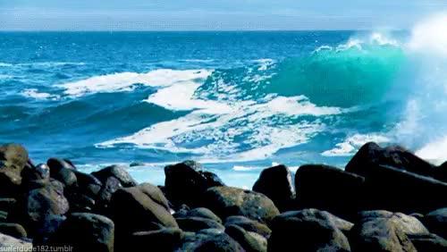 Watch and share Very Nice GIFs and Sea Gif GIFs on Gfycat