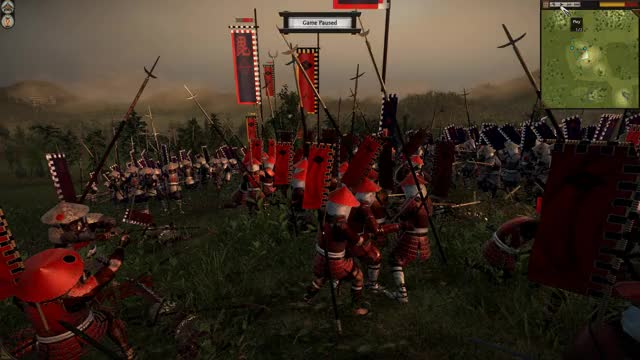 Watch and share Total War GIFs and Totalwar GIFs by wanzed on Gfycat