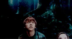 Watch and share Harry Potter Saga GIFs and The Golden Trio GIFs on Gfycat