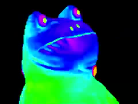 Watch and share MLG Frog Meme GIFs by The Livery of GIFs on Gfycat