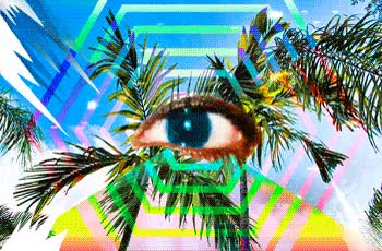 Watch and share Bleeding Palm Animated GIF: Eyeing Up Liberty City Palm Trees GIFs on Gfycat