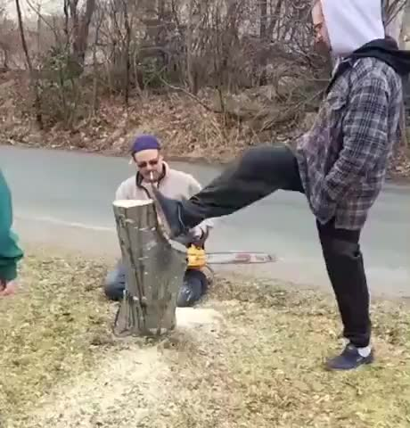 Dude went down without the tree doing anything
