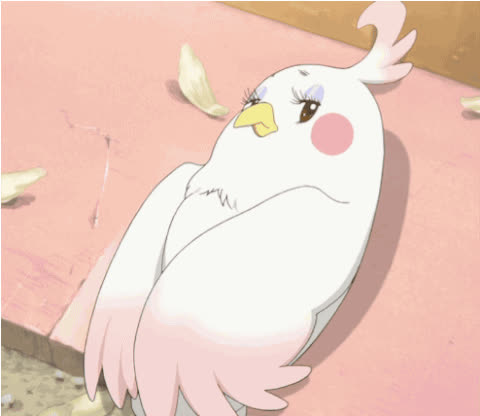 Anime, Bird, Side eye, Dera, Tamako Market GIFs