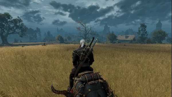 Watch witcher fields GIF on Gfycat. Discover more related GIFs on Gfycat