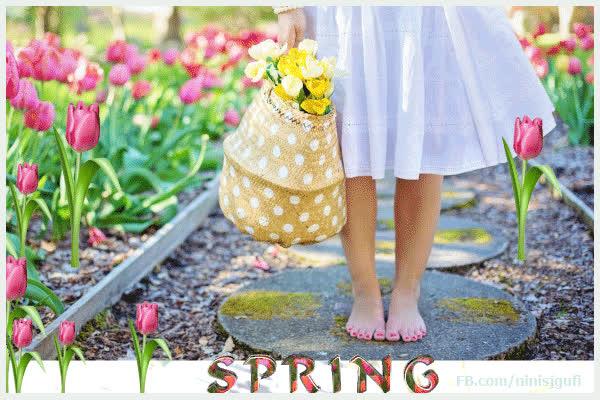 Spring Copypasta