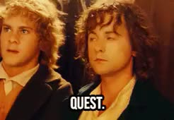 Watch and share Lord Of The Rings GIFs and Peregrin Took GIFs on Gfycat
