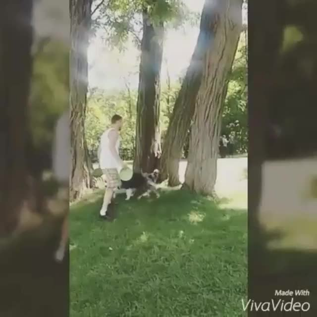 Watch and share Hopping GIFs on Gfycat
