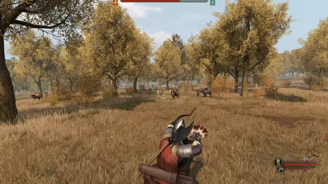 Watch and share Mount And Blade GIFs and Bannerlord GIFs by jordan823 on Gfycat