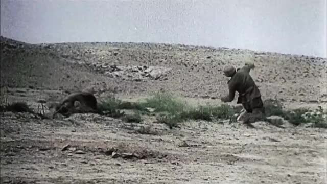 Watch and share Desert GIFs and Wwii GIFs by SLR107FR31 on Gfycat