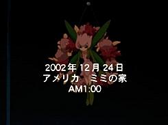 a very digi christmas, digimon adventure 02, mimi 02, palmon, palmon 02, Digimon // aaaa GIFs
