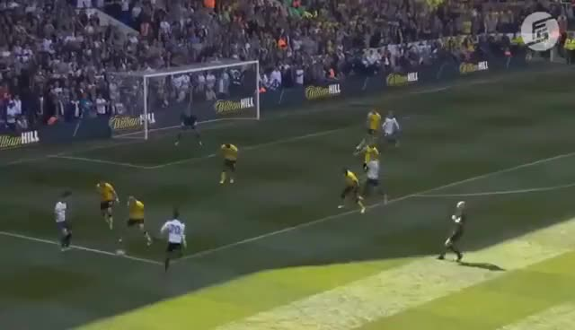 Dele Alli Wonderful Goal   Tottenham vs Watford 2017
