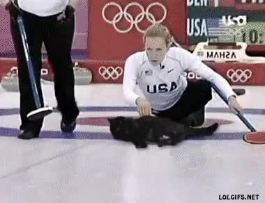 Watch Curling GIF on Gfycat. Discover more gifextra GIFs on Gfycat