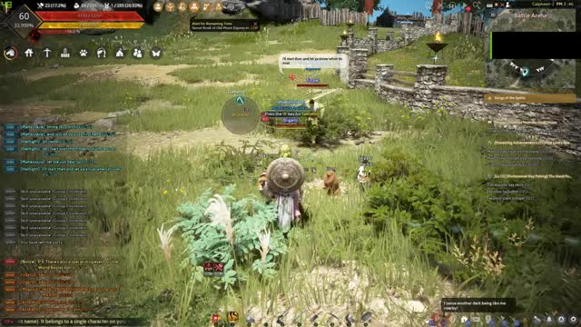 Watch and share Blackdesert GIFs and Bdo GIFs by Zellith on Gfycat
