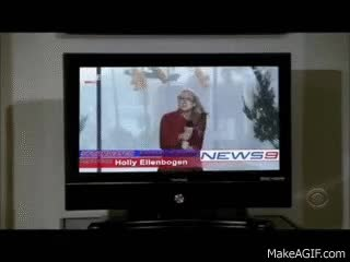Watch Weather Girl hit by stop sign GIF on Gfycat. Discover more related GIFs on Gfycat