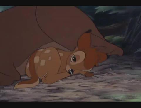 Watch Bambi GIF on Gfycat. Discover more Bambi, birth, cute, first, sleep GIFs on Gfycat