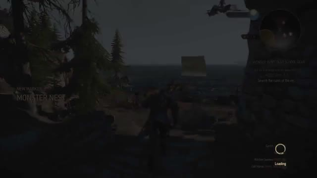 Watch and share Witcher3 GIFs and Witcher GIFs by shehzaan on Gfycat