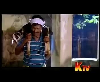 Watch soona paana vadivel comedy GIF on Gfycat. Discover more can, do, this, you GIFs on Gfycat