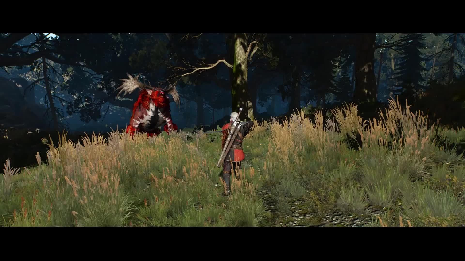 Witcher 3 Holy Hair Physics Reddit