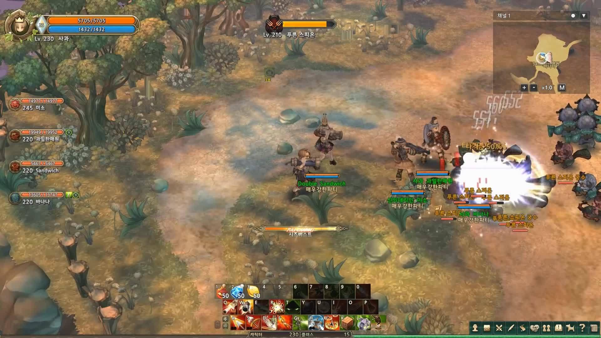 MMORPG, TOS, Treeofsavior, 트리오브세이비어 2015(Tree of Savior 2015 G-Star Trailer) GIFs