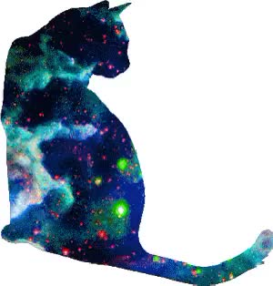 Watch and share Galaxy Inside A Cat GIFs on Gfycat