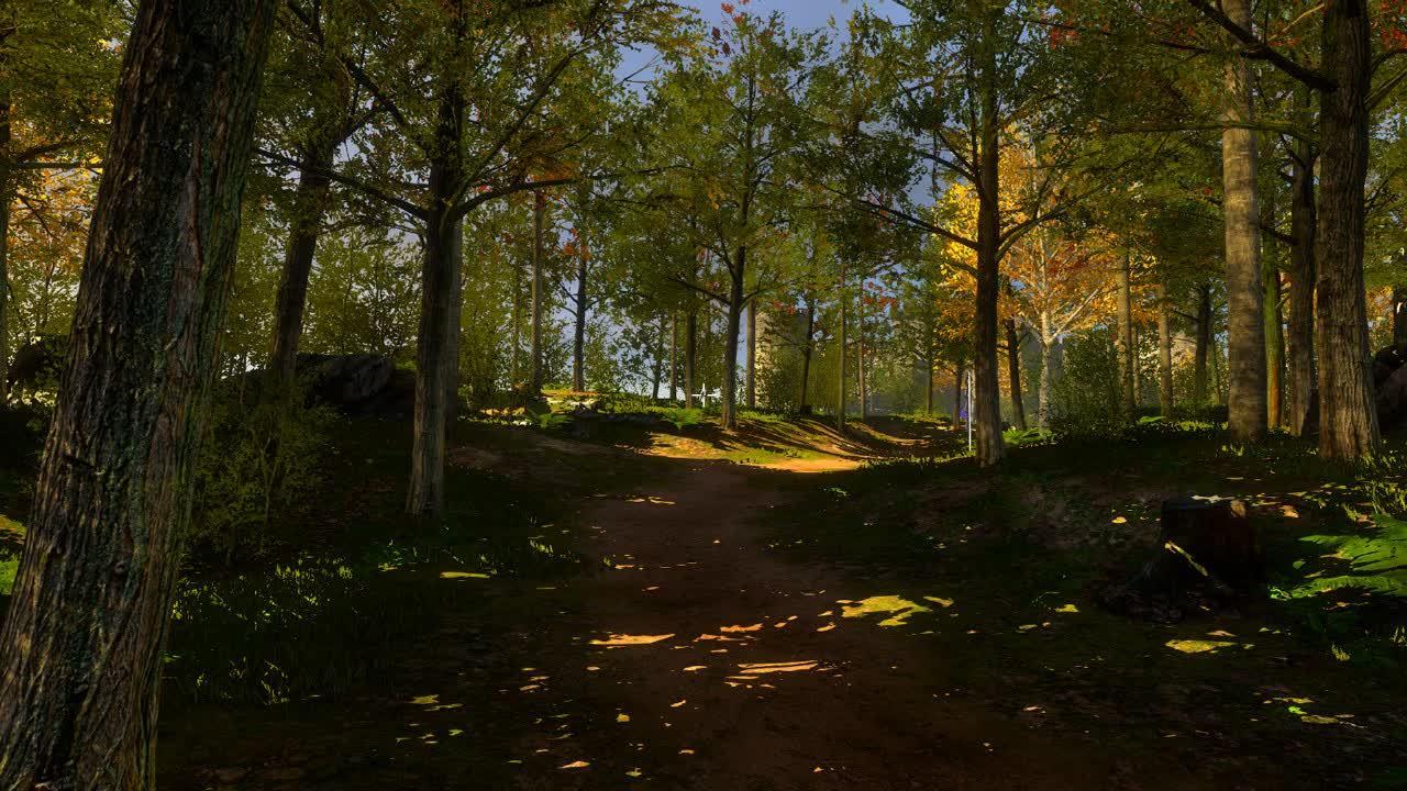 60fpsGamingGifs, 60fpsgaminggifs, pcmasterrace, [The Talos Principle] A walk through the forest (reddit) GIFs