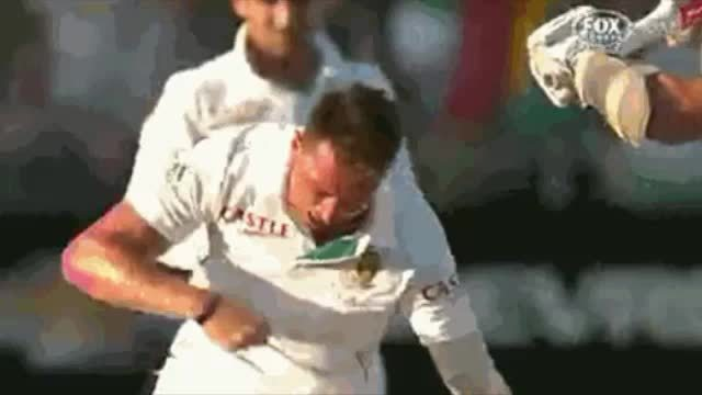 Cricket, supersaiyangifs, Super Saiyan Steyn GIFs