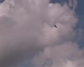 Watch and share Eurofighter GIFs and Typhoon GIFs on Gfycat