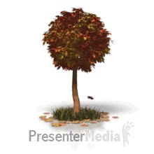 Watch and share Fall Tree Leaves PowerPoint Animation GIFs on Gfycat