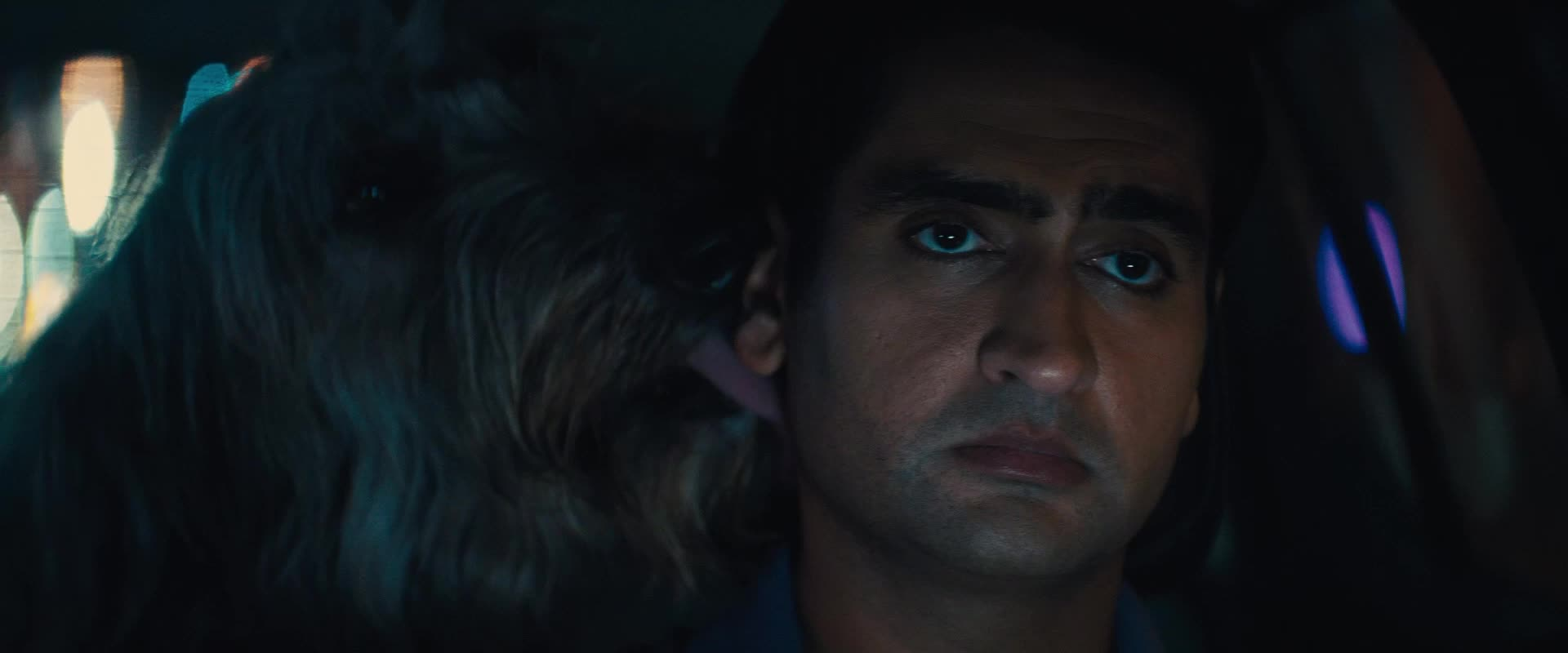 aww, awww, dog, kumail nanjiani, stuber, stuber movie, Dog Licking Kumail Nanjiani GIFs