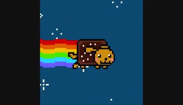 Nyan Dog, Nyan Dog GIFs