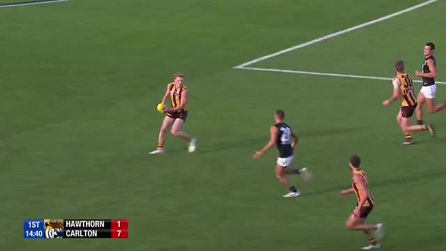 Watch and share Afl GIFs by goatflopper on Gfycat