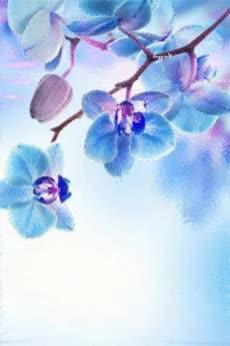Watch and share Голубая Орхидея - Цветы Анимация - Анимационные Блестящие Картинки GIF GIFs on Gfycat