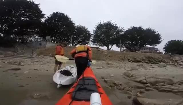 Monterey Bay Kayaking 8 12 2017 GIFs