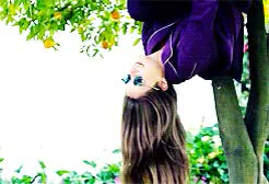 Watch shailene woodley; GIF on Gfycat. Discover more Shailene Woodley, by Julia, divergentcastedit, gifs, shaiwoodedit, tfioscastedit GIFs on Gfycat