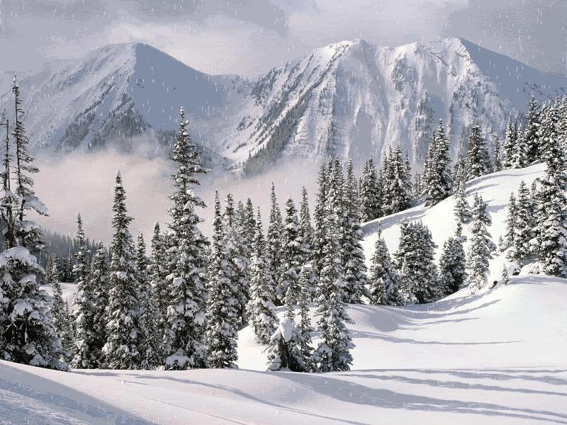 Mountain snow GIFs