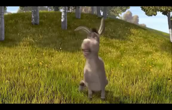 Watch this donkey GIF on Gfycat. Discover more donkey GIFs on Gfycat