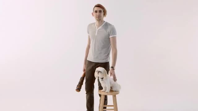 Watch and share Max Landis Dog Gif GIFs by tehnod on Gfycat