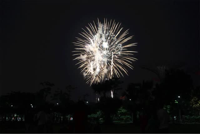 Watch and share Fireworks animated stickers on Gfycat