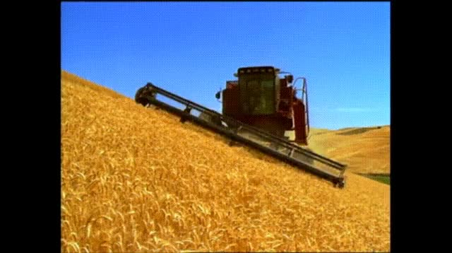 Watch and share Harvester On A Hill. GIFs on Gfycat