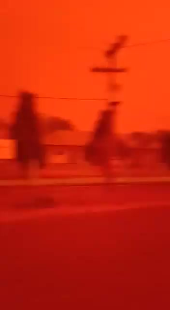 Watch and share Villaa. - No, This Isn't Mars. This Is Indonesia At 1pm. Our RainforestS ARE Burning, PLEASE HELP!! GIFs by GB on Gfycat