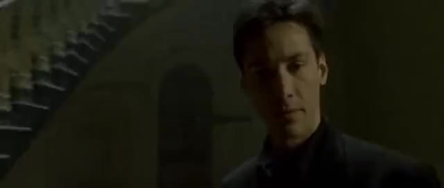 Watch this cat GIF on Gfycat. Discover more cat, deja vu, keanu reeves, matrix, neo, the matrix GIFs on Gfycat
