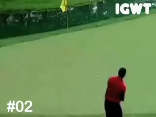Watch and share Tiger GIFs on Gfycat